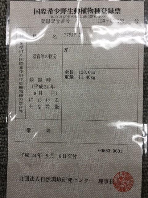 象牙買取 名古屋のお客様 11.4kg