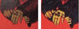 赤猿見分け方2