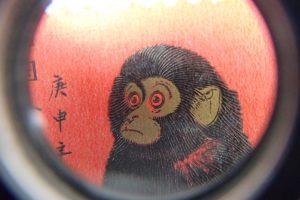 赤猿子ザルアップ