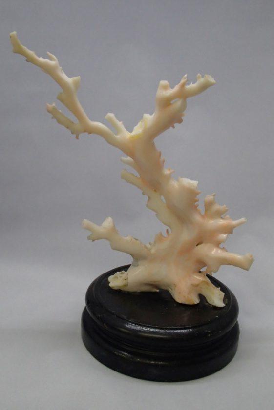 珊瑚買取 白珊瑚の置物 埼玉県のお客様