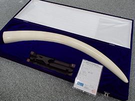 象牙一本牙買取 2.26kg 埼玉県のお客様。