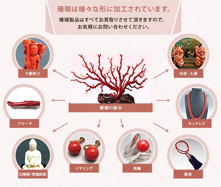 さまざまな血赤珊瑚買取