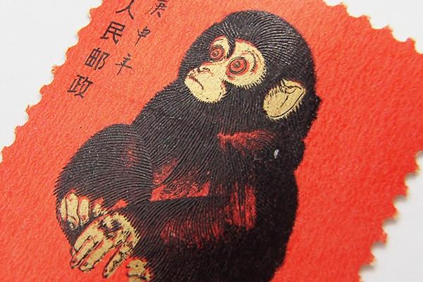 赤猿(子ザル)高価買取中